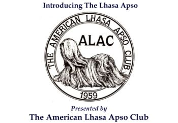 Introducing The Lhasa Aspos